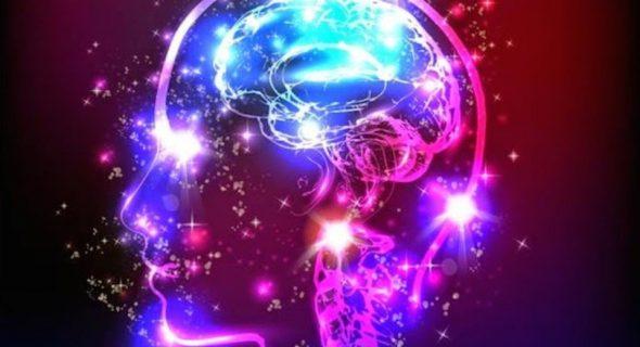 مغز انسان در چه فصلی فعال تر است!؟