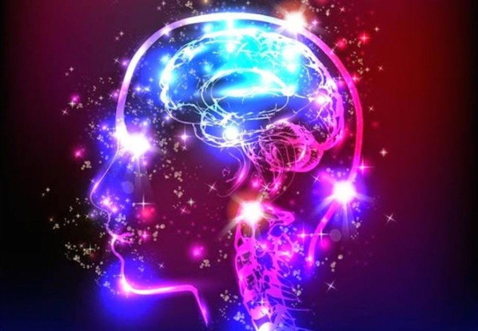 فعالیت مغزی در فصول مختلف